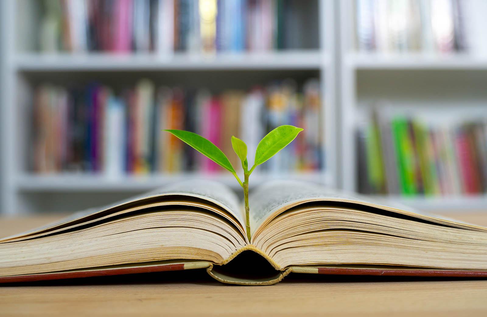 کتابهای پولساز و مطالعه ی هدفمند